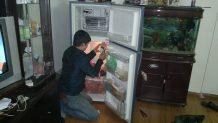 Sửa tủ lạnh uy tín tại quận Thanh Xuân